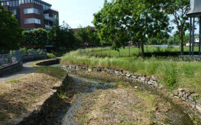 Droogte: geen oppervlaktewater meer voor akker of tuin